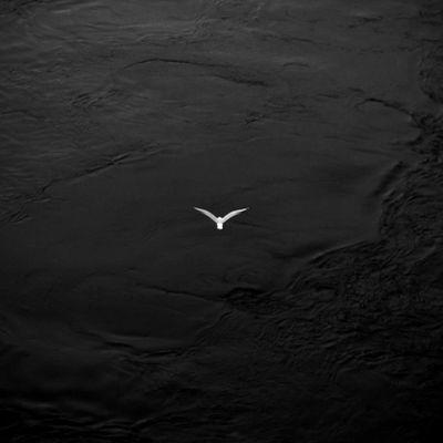 Villanás a víz felett