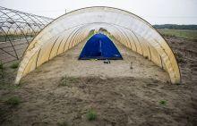 Menedék Menekültek által hátrahagyott sátor Ásotthalomnál .
