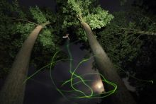 Szent Iván éjjelén A felvételen egy szentjánosbogár látható multiexpozícióval. Először vakuval világítottam meg a bogarat, majd a fénycsíkot exponáltam be, végül a hátteret.