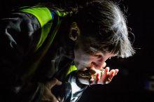 Békakirályfi Sámuel Zsuzsanna önkéntes békamentő megcsókol egy, a 2-es számú főút mellett begyűjtött barna varangyot Hont közelében 2015. március 21-én.