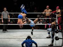 Repülősó A modern pankráció egyfajta előadóművészet, ahol a résztvevők egy olyan műsort hoznak létre, mely egy küzdősport jellegű mérkőzést vagy mérkőzés-sorozatot szimulál. Az egyesült államokbeli World Wrestling Entertainment jeles képviselői szórakoztatták a Budapest Aréna nagyközönségét 2015. április 16-án. A műsor tervezettsége ellenére, a látványos elemekkel tűzdelt bemutató sportértékét nem lehet vitatni, nagy a sérülések kockázata.