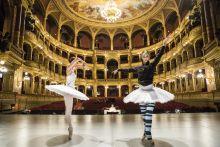 Balettcipőben, tüllszoknyában Főpróba hét van a Magyar Állami Operaházban, A Hattyúk tavát táncolja a Magyar Nemzeti Balett. A jól ismert klasszikust így még nem látta a közönség, hiszen a holland Rudi van Dantzig teljesen új koreográfiát alkotott. A mesevilágot idéző díszletek között tüllszoknyás balerinák és szívós férfi táncosok készülődnek, akik szerint a balett sokkal többet ad, mint amennyit elvesz.