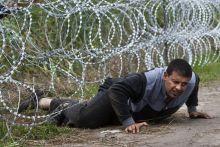 Az utolsó akadály 2015.08.26. Röszke, magyar-szerb határ Sziriai menekült sikeresen átbújik a pengekerítés alatt