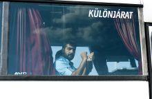 Rab Egy Ausztriában elfogott majd Magyarországra visszatoloncolt migráns, rabság jelképét mutatja egy autóbusz ablakából 2015. szeptemberében a hegyeshalmi határátkelőn.