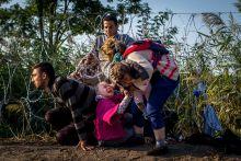 Menekültek Egy menekült kislány haja beleakadt a drótkerítésbe, miközben a családjával próbált átjutni alatta Magyarországra, Röszke közelében, augusztus 27-én.