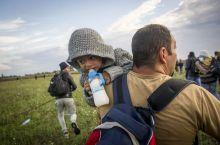 Az üldözött Egy év körüli kisfiú édesapjával menekül a rendőrök elől a röszkei zöldhatárnál augusztusban. Pár száz méter futás után önként adták meg magukat a szembejövő járőrnek.