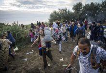 Zöldhatáron át Szíria menekültek futnak a röszkei zöldhatárnál  augusztus végén.