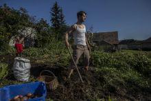 Paraszt-wellness A Borsod-Abaúj-Zemplén megyei Gömörszőlős az elmúlás helyett a fenntartható fejlődés szimbóluma lett, pedig a nyolcvanlelkes kisközséget, csakúgy, mint a legtöbb hasonló magyar települést az utóbbi évtizedekben, megélhetési okok miatt érdemesebb volt elhagyni, mint benépesíteni. A földet úgy kell művelni, hogy sem a talaj nem megy tönkre biológiai, sem a földműves fizikai és lelki értelemben – szól az itt tevékenykedő alapítvány hitvallása. A faluban évente többször hirdetnek nyitott hétvégéket, amikor dolgozni vágyó önkénteseket várnak. A program neve: paraszt-wellness.