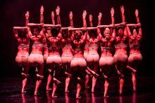 Sorfal A Győri Balett női táncosai pózolnak A terem című darab műsorfüzetéhez 2015 október elsején, a Győri Nemzeti Színház színpadán. A táncjáték a halál utáni pillanatot mutatja be humorosan a nézőknek.