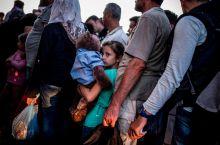 Hosszú várakozás Menekültek várakoznak az ideiglenes állomásra szállításukra Röszke mellett, augusztus 27-én