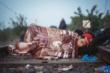 Menekült Egy menekült alszik a Szerb-Magyar határon a síneken.