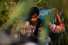 - A migrant walks through a foresty area between the two border crossings at Roszke after they were closed by Hungary on 14 September 2015
