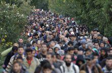 Jázmin utca Menekültválság Magyarországon. A fényképek Hegyeshalomban, a Jázmin utcában készültek szeptember 15 és október 7 között. A Hegyeshalomba érkező migráns vonatokról a rendőrség a legrövidebb úton kísérte ki a Magyar - Osztrák határra a migránsokat. A Jázmin utcán, naponta többezer migráns ment át ...