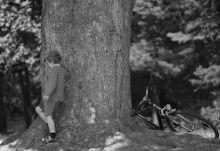 Róbert Gida Kisfiú áll egy fa tövében a Margit-szigeten 2015 nyarán.