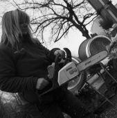 Női princípium Fenyőárusnő motoros fűrésszel farag egy karácsonyfát 2015 decemberében Budapesten.
