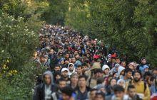 Hegyeshalom 2015 Menekültválság Hegyeshalomban. A fényképek a Magyar - Osztrák határ közelében (Hegyeshalom), és a határátkelőponton készültek szeptember 5 és október 7 között