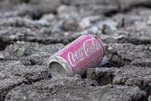 Az utolsó Cola Az utolsó kóla a Vekeri tavonami egykor tó volt.
