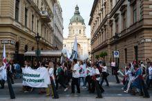 Egészségügyiek tüntetése Egészségügyi dolgozók tüntetnek magasabb bérekért és jobb munkakörülményekért Budapesten, 2015. május 12-én.