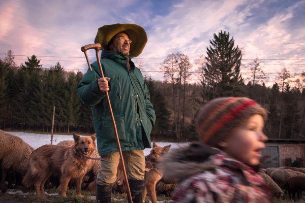Pásztorlét Ausztriában