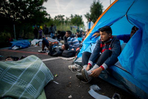 Káosz a magyar-szerb határon